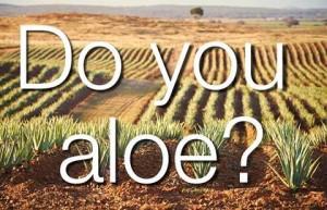 do you aloe
